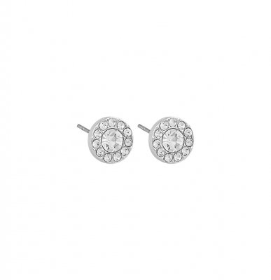 Sence small stone ear silver/clear